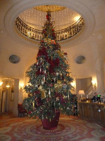 Christmas At The Ritz London.Christmas Tree In Reception Picture Of The Ritz London