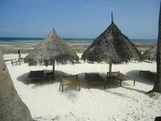 Flamingo Villas Club: spiaggia