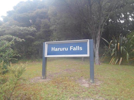 Haruru Falls: board