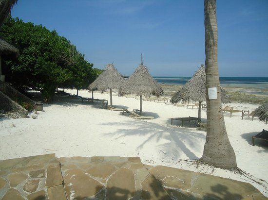 Flamingo Villas Club: spiaggia