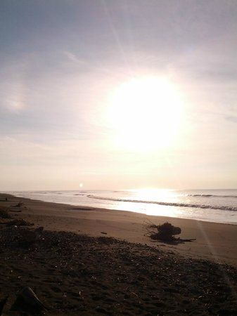 Surfcamp Guanico: Playa