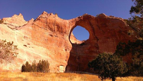 Quality Inn Navajo Nation Capital : window rock
