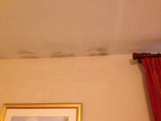 Inn for All Seasons : Ceiling mold