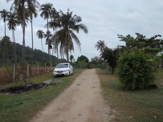 Jinta Beach Bungalow: the driveway
