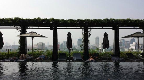 The St. Regis Bangkok : Pool