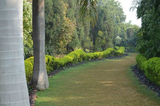 Surjivan Resort: approach