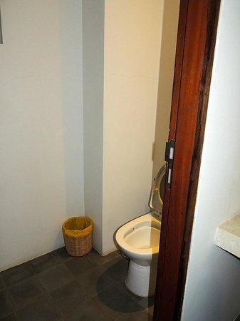The Purple Mangosteen: Toilet
