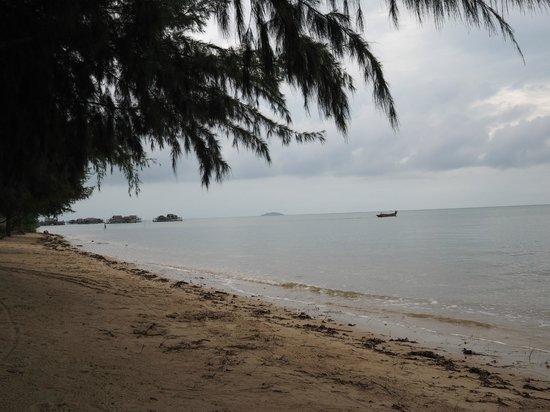 Marjoly Beach Resort : Stranden som kändes väldigt privat.