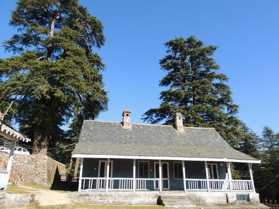 The Devdar: Devdar Cottage
