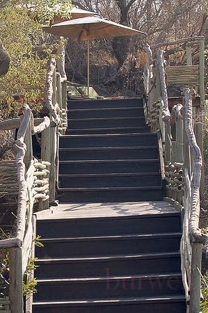 Buffalo Ridge Lodge: stairs to the pool