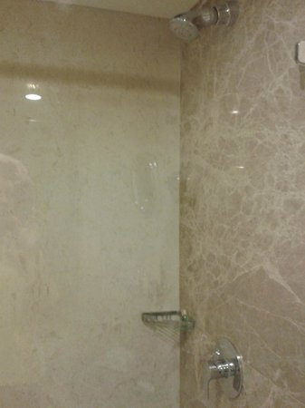 The Suryaa New Delhi : Bathroom shower spotless