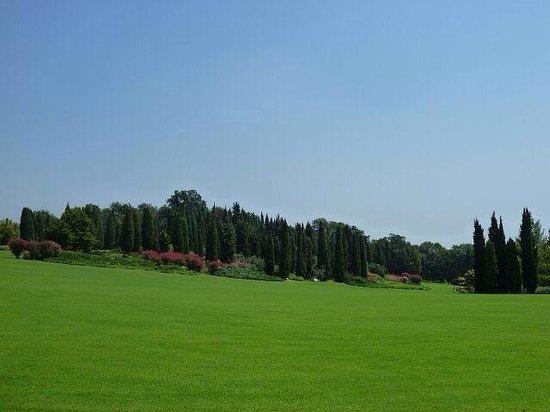 Parco Giardino Sigurta : Best view ever