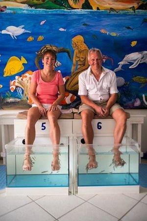 Hug Bucket Fish Spa