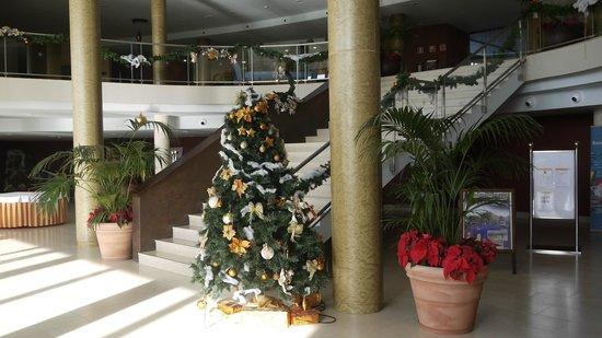 IBEROSTAR Playa Gaviotas Park : Lobby