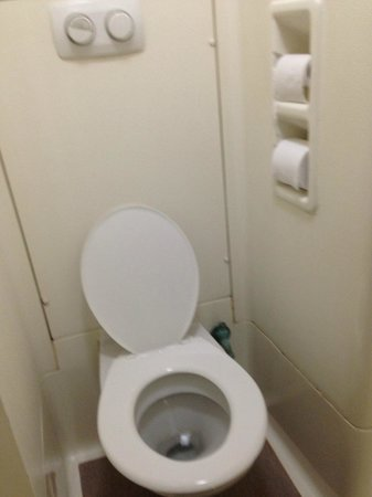 Ibis Budget St Peters: toilet