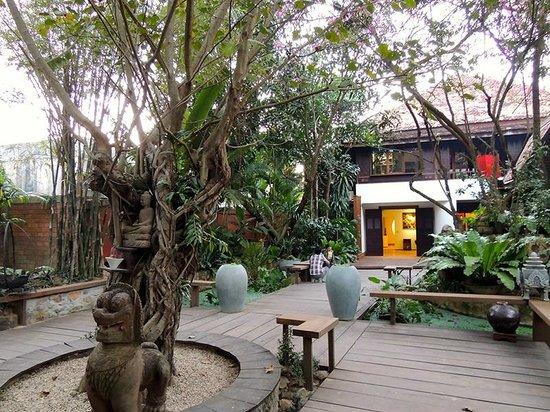 Theam's House: The garden