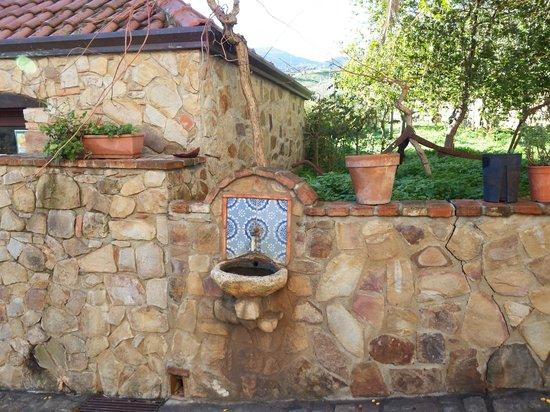 Agriturismo Bergi: fontana