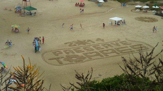 Praia de Torres (Torres Beach): Preserve Torres, conscientização
