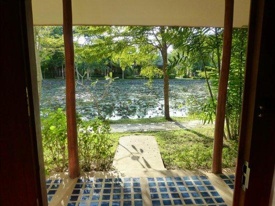 Phowadol Resort and Spa: Blick aus dem Zimmer