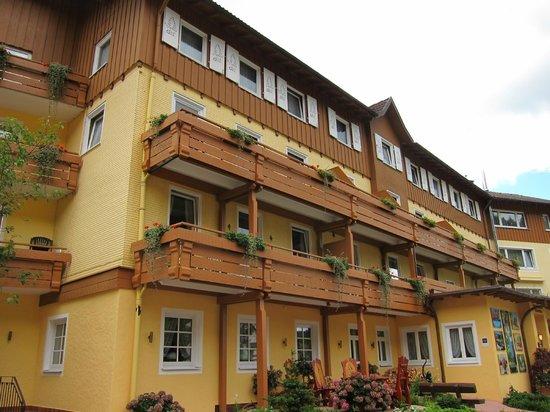 Wellnesshotel Tanne: Hotel Tanne
