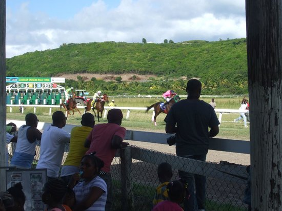 Coconut Beach Club: At the races