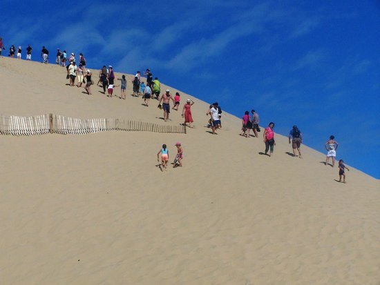 Dune du Pilat : Just a little more dune to climb