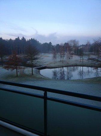 Hilton Royal Parc Soestduinen: Uitzicht op de golf baan