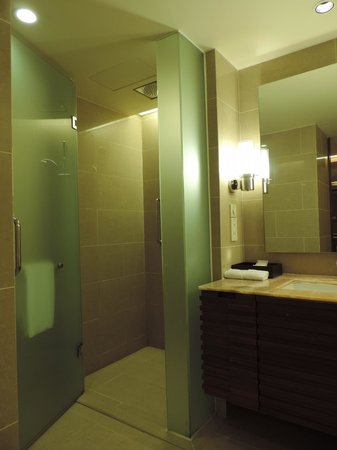 Hyatt Regency Kinabalu: shower and washroom
