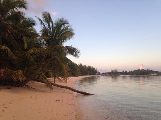 Augusta Bay Bahamas : Beach next to hotel