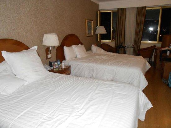 Hotel Ankara Altinel: Room