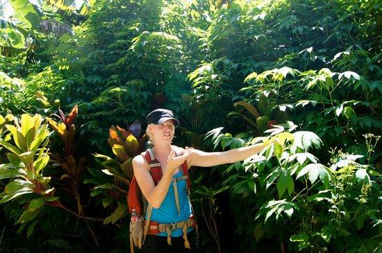 Hike Maui : Our wonderful & knowledgeable guide, Kate