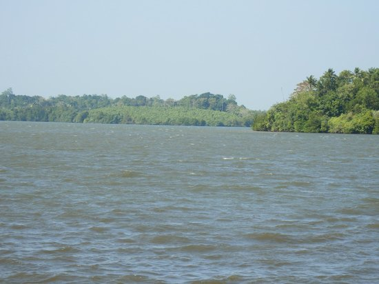 Kalla Bongo Lake Resort: Lakeside view