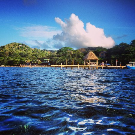 Tranquilseas Eco Lodge and Dive Center : View of Resort From a Kayak
