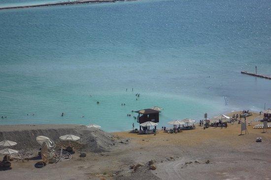 David Dead Sea Resort & Spa: spiaggia dell'hotel sul mar Morto