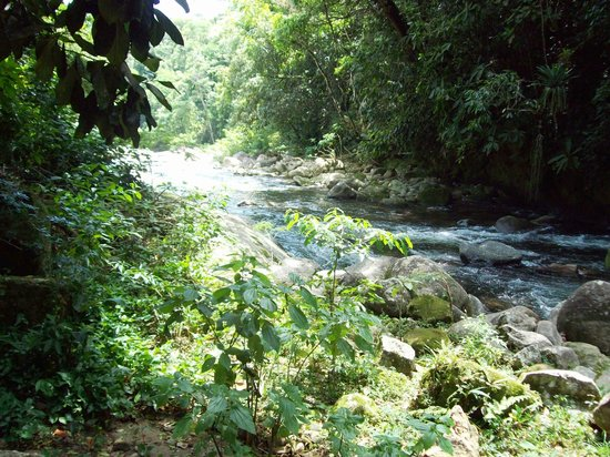 Cachoeiras de Macacu, RJ: Vista da varanda
