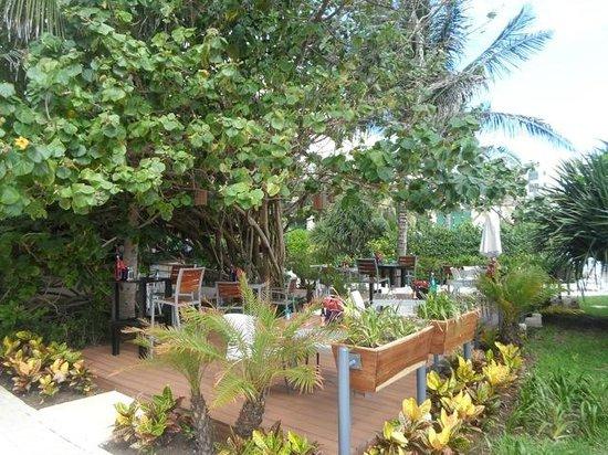 Live Aqua Beach Resort Cancun: Outdoor Pizza and Pasta restaurant