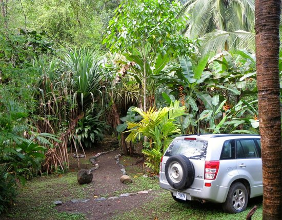 Osa Rainforest Rentals: car parking area with walking path up to the house