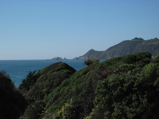 Nugget Lodge: Nugget Point