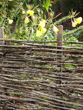Salzburger Freilichtmuseum: oddly was smitten by many examples of simple woven fences