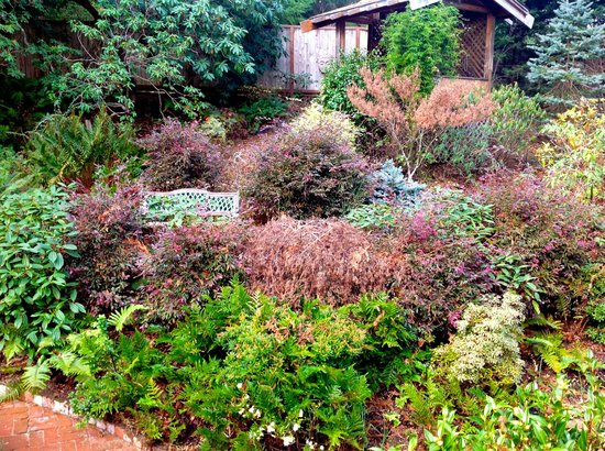 Inverness Secret Garden Cottage: The winder cottage garden is still colorful and interesting.