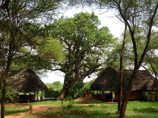 Sanctuary Swala : Central Camp area with bar and restaurant