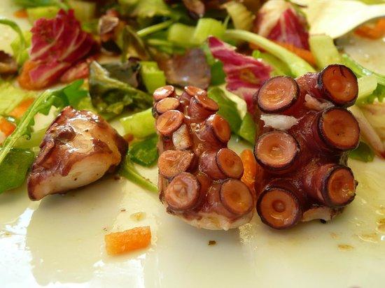 Locanda San Vigilio: Tintenfisch