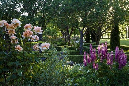 Frensham Gardens: A late summer's afternoon