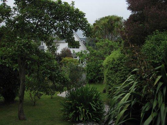 Fantail Lodge: The wonderful Garden