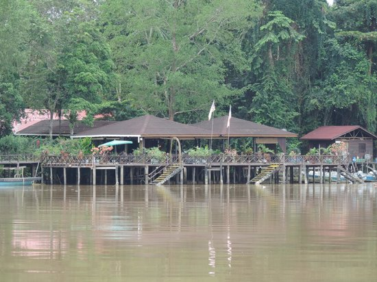 Abai Jungle Lodge : Verandah from other side of river