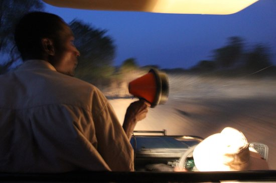 Marula Lodge : night drive