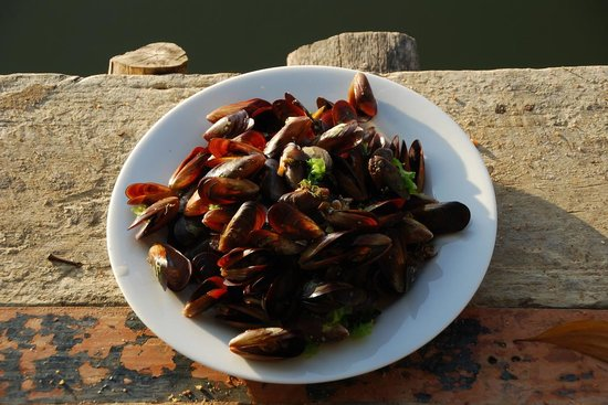 Coconut Island Cabanas and Restaurant : fresh mussels offered by the hosts!