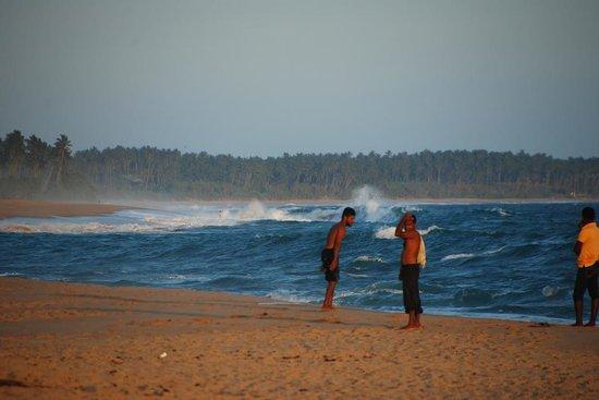 Coconut Island Cabanas and Restaurant : endless beach!