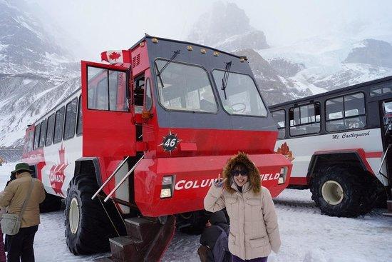 Columbia Icefield Glacier Adventure: 大迫力のスノーコーチ