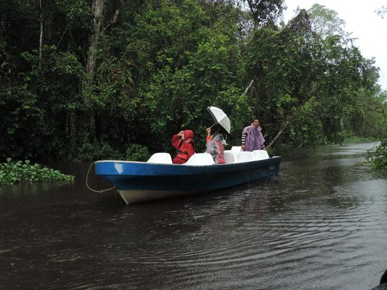 Kinabatangan Riverside Lodge : Boat Trip in Monsoon Rain